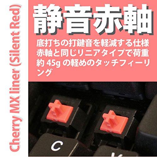 ARCHISSProgresTouchTKLワイヤーキープラー付日本語91キー二色成形PS/2&USBCHERRY静音赤軸テンキーレスキーボードAS-KBPD91/SRBKNWP