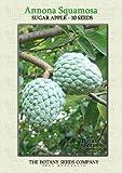 The Botany Seeds Company Fruits