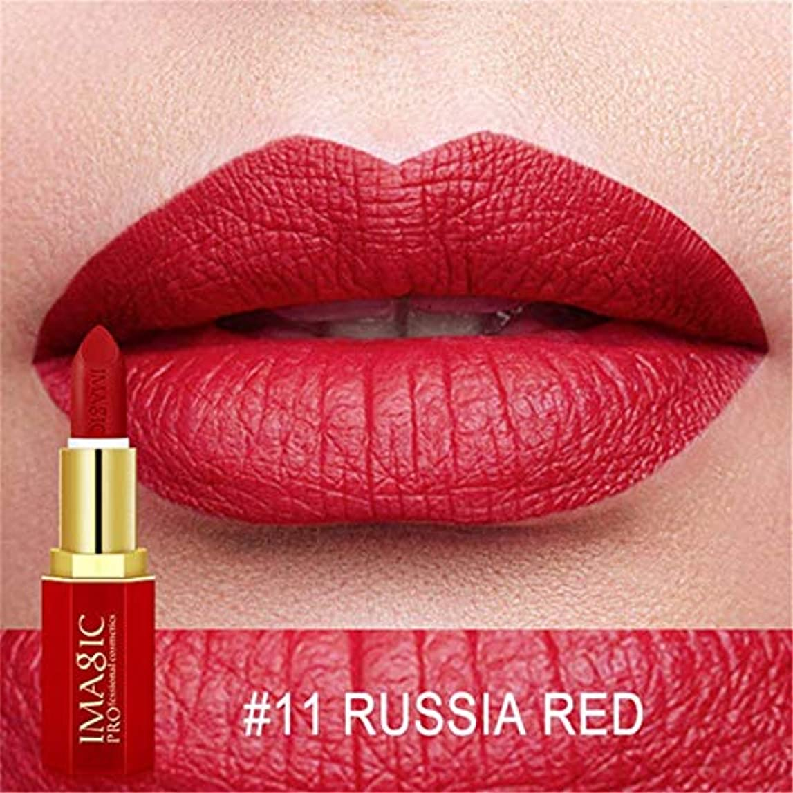 金属不完全熟達した注12色の唇メイクアップ口紅防水長続きがする顔料マット口紅美容メイクアップ化粧品マットバットプロフェッショナル
