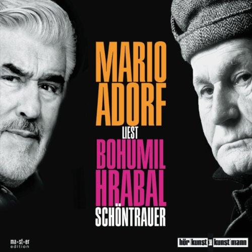 Schöntrauer audiobook cover art