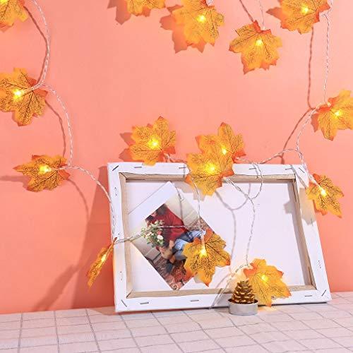 CRITY - Cadena de Luces LED, diseño de Hojas de Arce, para Navidad, Caja de Pilas, Farol...