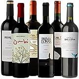 6er Best of Tannat, Südamerika Weinpaket