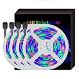 Biccq LED Franja, 32.8ft / 10M 300LEDs RGB SMD5050 Luz De Tira IP65 Luces Cambiantes Del Color De La Cuerda TAPE 44keys IR Mando A Distancia Tiras Flexibles For La Sala De TV Cocina Decoración Del Par