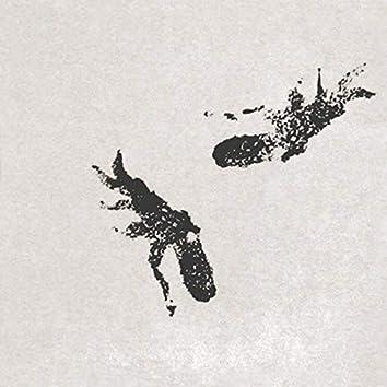 Views/Octopus EP