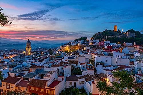 YANCONG Puzzle Personalizado 300 Piezas, Vista Nocturna De La Ciudad De Málaga España