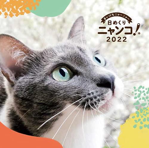 日めくりニャンコ!2022年(卓上日めくりカレンダー猫版)