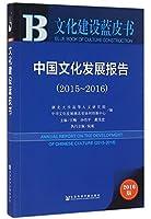 文化建设蓝皮书:中国文化发展报告(2015-2016)