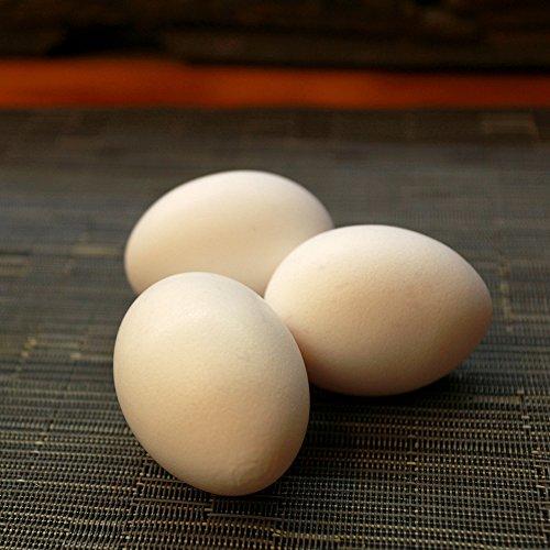 【訳あり】櫛田養鶏場のおいしい白卵【160個入り(140個+20個破卵保障)】餌にこだわった超新鮮たまごを養鶏場から直送!