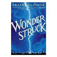 Wonder Struck 寂静中的惊奇(《造梦的雨果》姊妹篇) ISBN 9780545027892