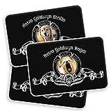 Gifty Lab Tappeto per Animali Domestici Personalizzato con Foto e Nome del Tuo Migliore Amico, 40x60 cm. cod.METRO001