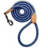 Mile High Life Leather Tailor Reinforce Handle Mountain Climbing Dog Rope Leash with Heavy Duty Metal Sturdy Clasp (Blue, 5 FT)