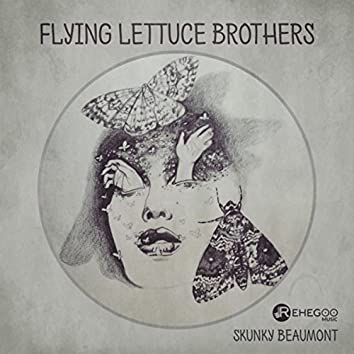 Flying Lettuce Brothers (Experimental Rock, Stimulating Brain, Aggressive, Psychedelic Music)