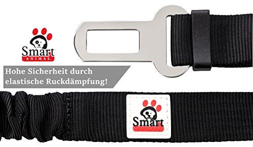 Premium Hunde-Sicherheitsgurt - 4