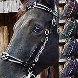 TZH Briglia per Cavalli in Pelle Moda retrò Redini per Cavalli con Fibbia in Metallo Cavezza Universale per Cavalli All'aperto per L'equitazione Quotidiana/Gare,Verde