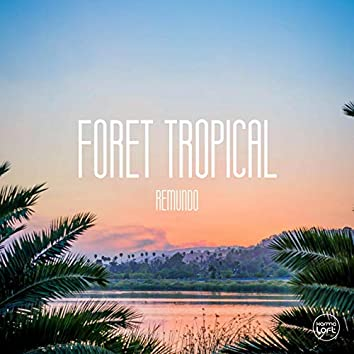 Foret Tropical