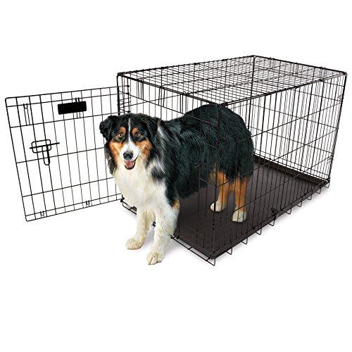 Aspen Pet Home Training Wire Crate, Black - 34.6' X 22.6' X 25.4'