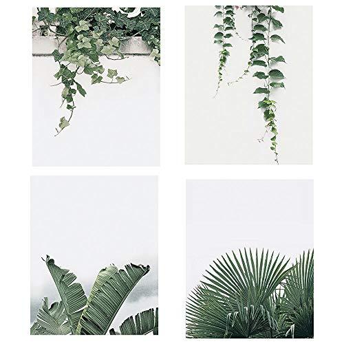 KAIRNE 4er Set Poster Set Wohnzimmer | Grüne Blätter Bilder | Moderne Wandbilder Premium Mix | Wand-Bilder Schlafzimmer | Wandposter Posterset Monstera Pflanze | Ohne Rahmen