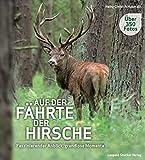 Auf der Fährte der Hirsche: Faszinierender Anblick, grandiose Momente