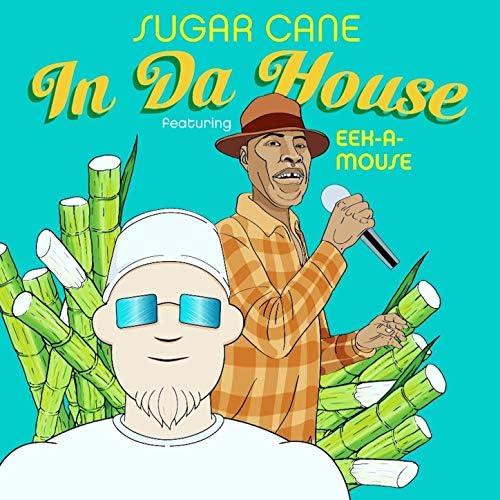 Sugar Cane feat. EEK-A-MOUSE