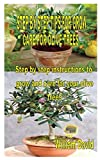 STEP BY STEP TIPS FOR GROW AND CARE FOR OLIVE TREES: Step by step instructions to grow and care for your olive trees