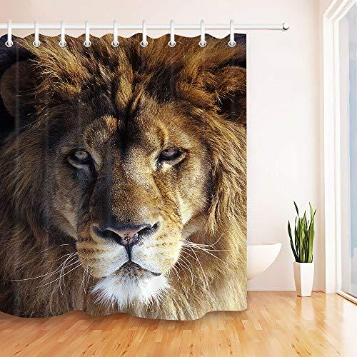 JHTRSJYTJ Porträt eines afrikanischen Löwen Duschvorhang ist geeignet für Badezimmer,Polyester wasserdicht,12Haken,150X180cm,Wohnkultur