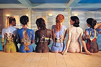 Pink Floyd Discography On Women 24x36 Poster
