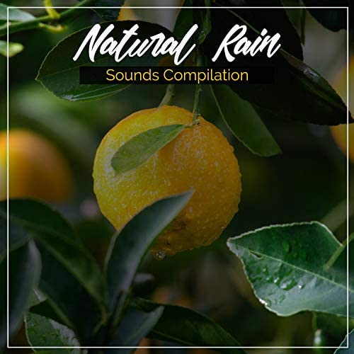 calming rainforest sounds, Rainfall for Sleep, Rain Sounds Factory STHLM