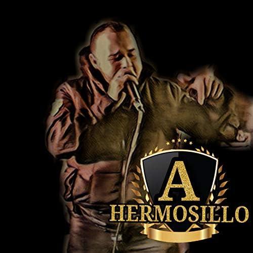 Andres Hermosillo