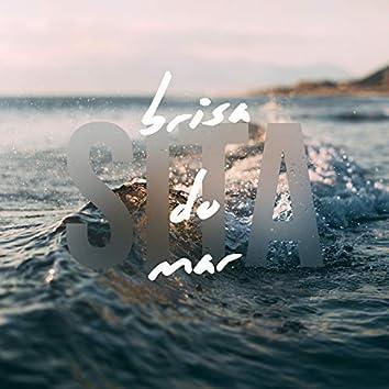 Brisa do Mar