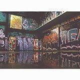 Fondo de fotografía de Graffiti de Arte de Pared de ladrillo, Estudio de fotografía de Fondo de fotografía de Retrato A9 9x6ft / 2,7x1,8 m