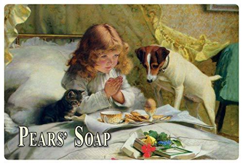 Blikken bord 30x20cm reclame Pears Soap meisje kat hond zeep bord Tin Sign