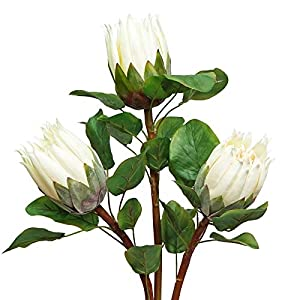 MINYULUA Artificial King Protea Silk Artificial Flowers Real Touch Protea Cynaroides Flowers 26.77 Inch Tall Flower Arrangements Decor for Home Kitchen Garden Wedding Party Decoration (White)
