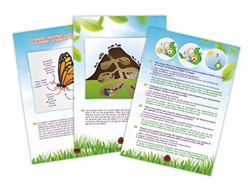 Buki BL033 - Explorador insectos