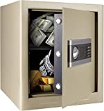 Best Home Safes - 1.7Cub Fireproof and Waterproof Safe Cabinet Security Box Review