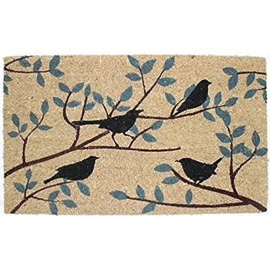 J&M Home Fashions Natural Coir Coco Fiber Non-Slip Outdoor/Indoor Doormat, 18x30 , Heavy Duty Entry Way Shoes Scraper Patio Rug Dirt Debris Mud Trapper Waterproof-Birds