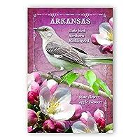 ARKANSAS BIRD AND FLOWER postcard set of 20 identical postcards. AR state symbols post cards. Made in USA. [並行輸入品]