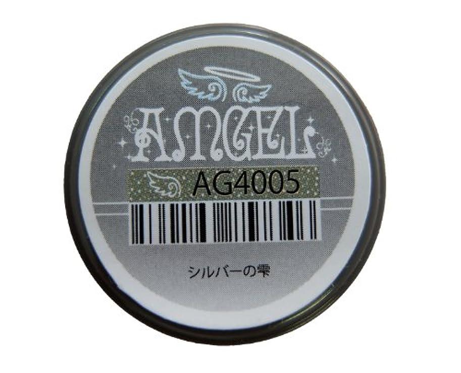 合図石膏秘書AMGEL(アンジェル) カラージェルAG4005 シルバーの雫