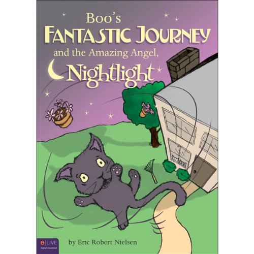 Boo's Fantastic Journey and the Amazing Angel Nightlight audiobook cover art