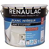 Renaulac Peinture intérieur Murs & Plafonds Bicouche Acrylique Blanc Mat 10L - 100m²