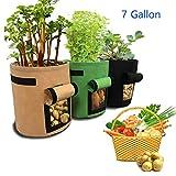 AILUOR Potato Grow Bag, 3 Pack Potato Planter Bag, Planting Grow Bags - Plant Pots with Strap Handles, 7-Gallon Breathable Nonwoven Cloth Window Vegetable Grow Bag for Potato/Carrot (3 Pack)