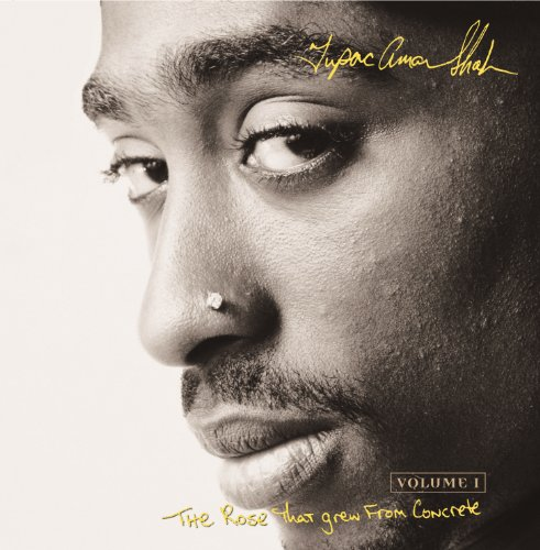 The Rose That Grew From Concrete (Album Version) -