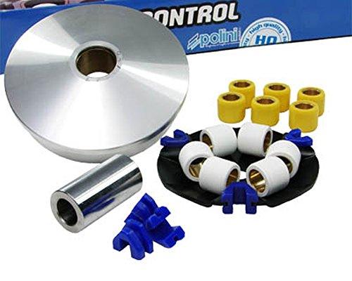 Variomatik POLINI Speed Control für TGB Akros 50cc, Bullet, R50X, Hook, Laser, Meteorit, Sky 1, 2