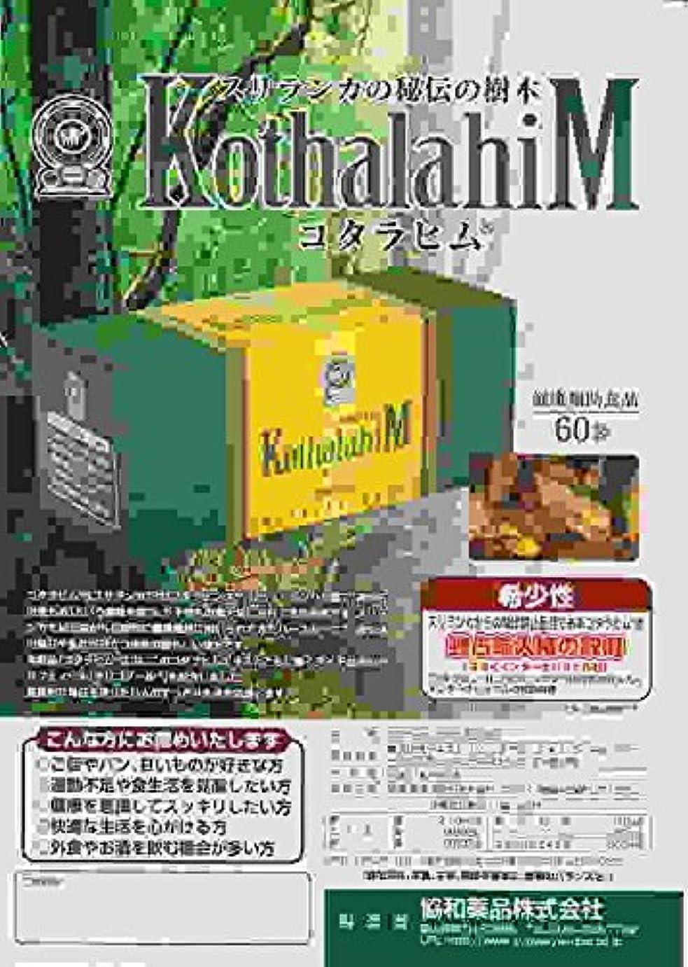 逆にアミューズメント風味コタラヒム60袋 6個
