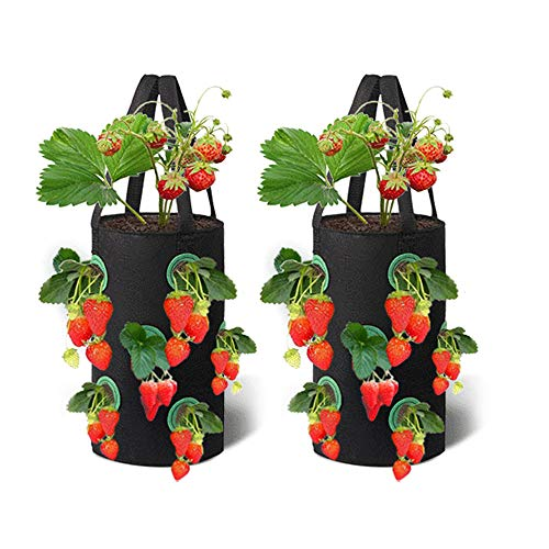 2 Packs Strawberry Grow Bags 3 Gallon Gardens Hanging Strawberry Planter, Breathable Non-woven Fabric Growing Bag for Garden Strawberries, Herb Flowers (Black)