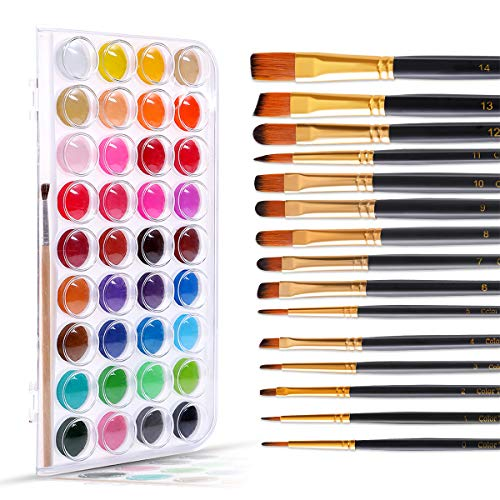 Color Technik Watercolor Paint and Paint Brush Set, 36 Vibrant Color Cakes, 15 Assorted Paint Brushes for Acrylic, Watercolor, Oil and Gouache, Artist Quality, Adults & Kids, Gift Box