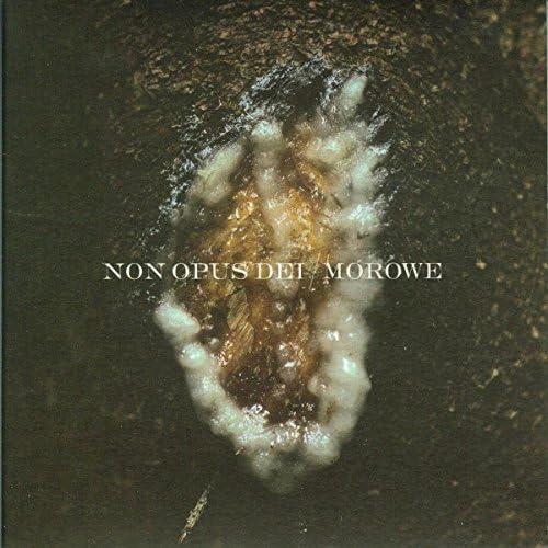 Non Opus Dei, Morowe