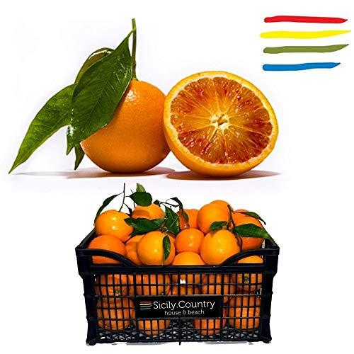Arance di Sicilia 'Tarocco' KG 16 - non trattate e non cerate - Buccia Edibile - calibro misto - ottime per spremute, da tavola o per preparare marmellata di arance fresche genuina.