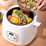 Smart 2 Litre Rice Cooker,Steamer,Slow Cooker,Mini Multi-Function Small Appointment Timed 1~4 People