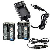 DSTE 2-Pieza Repuesto Batería y DC01E Viaje Cargador kit para Sony NP-FM500H A57A58A65A77A100A200A200K A200W A300A300K A300X A350A350H A350K A350X A450A500A550A560A580A700A700K A700P A700Z