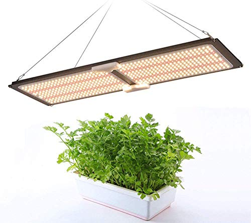 Lamp LED Grow Light Meanwell HLG 240 W dimbaar Full Spectrum Lm301b 3500 K Red Mix UV IR radiator 660 Nm plaat Quantum lamp fabriek voor kamerplanten en veg bloemen